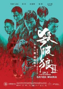 Kill Zone 2 (2015) Bagnla Subtitle - (Saat po long 2)